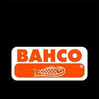 bacho