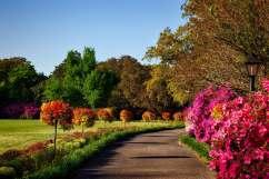 bellingrath-gardens-alabama-landscape-scenic-158028