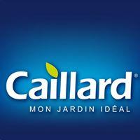 caillard